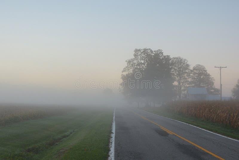Foggy Sunrise stock photo