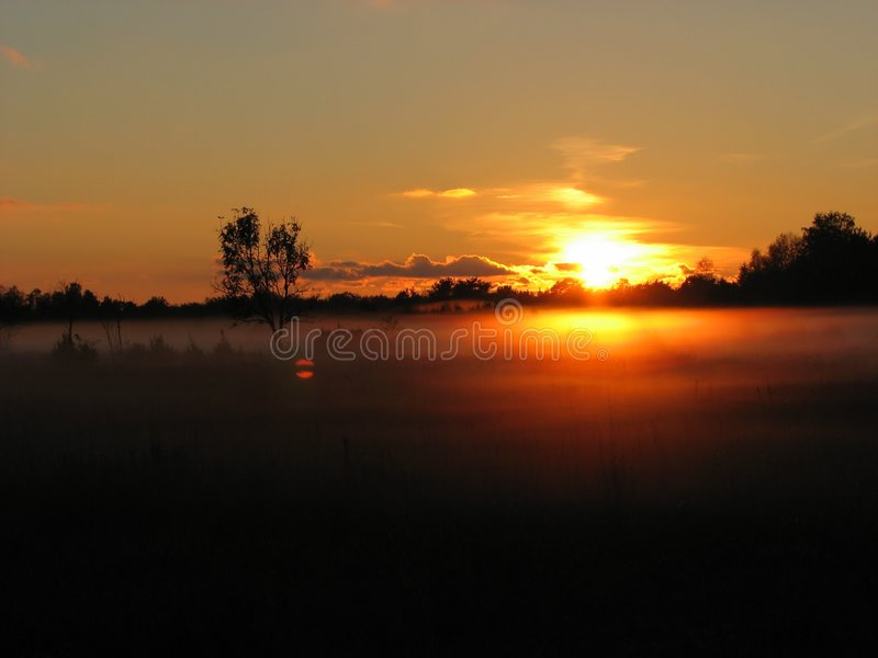 Download Foggy sunset stock photo. Image of nature, foggy, scenic - 1397834