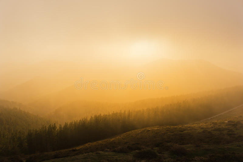 Foggy sunset in mountain. Foggy sunset in the mountain royalty free stock images