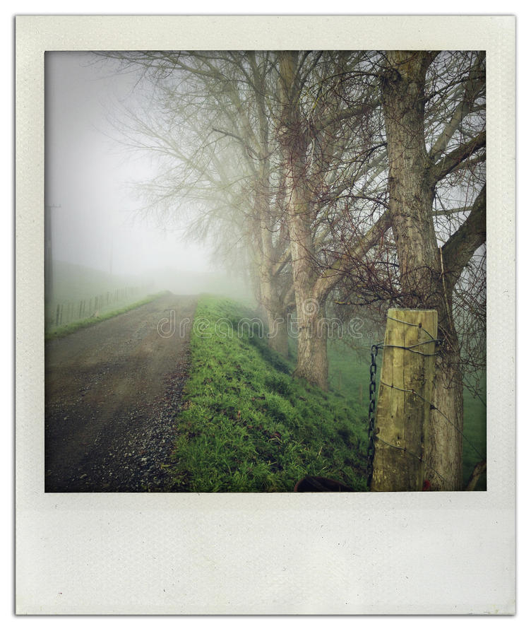 Download Foggy trail stock photo. Image of scenery, outside, moody - 32018928