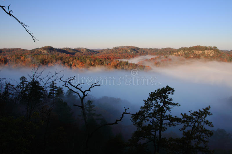Download Foggy valley stock image. Image of silhouette, kentucky - 23180725