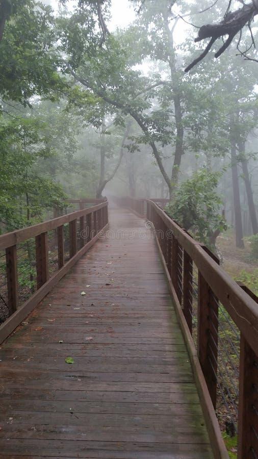 Foggy walkway royalty free stock photo