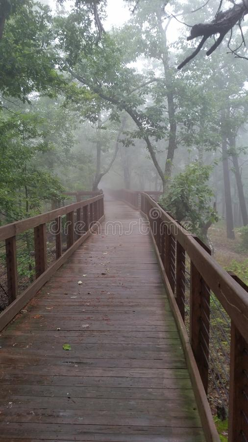 Foggy walkway royalty free stock images
