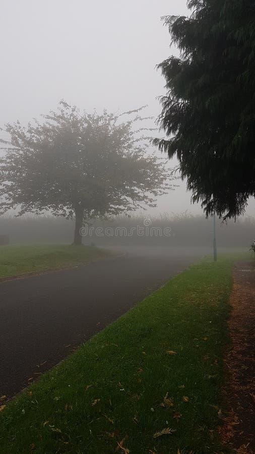 Foggy weather condition dans le village photographie stock libre de droits