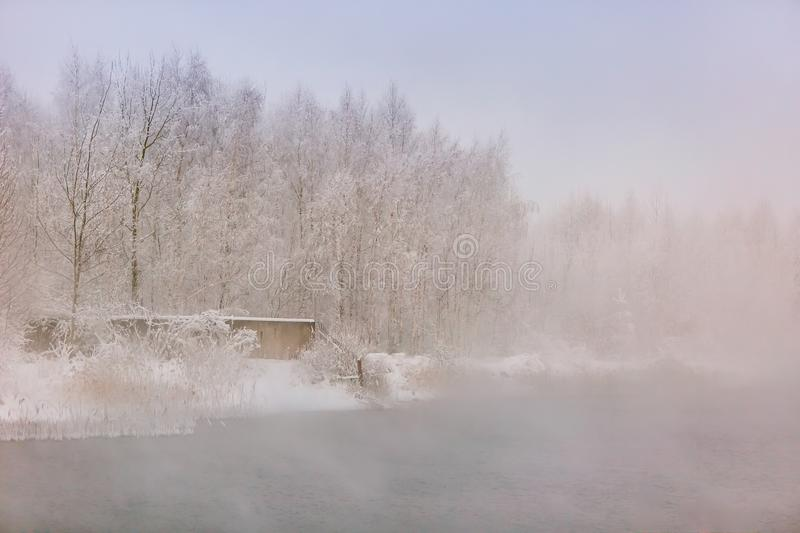 Foggy winter forest near water surface. In the rural area. Nature landscape stock image