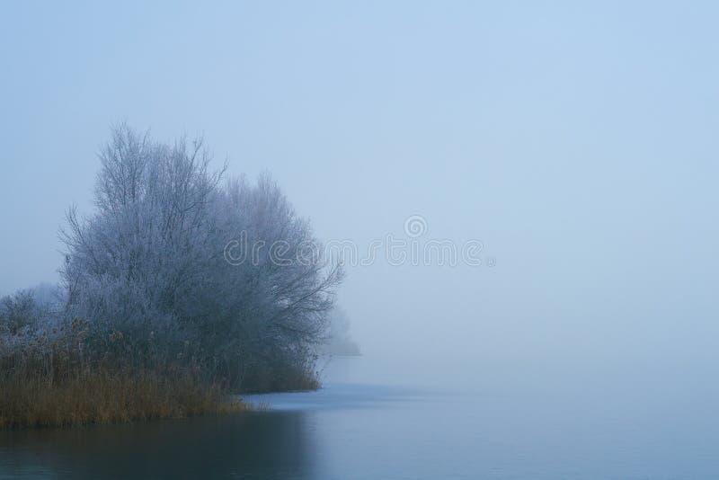 Foggy winter frozen lake stock photography