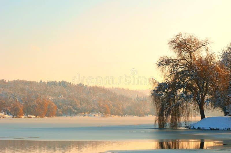Foggy winter lakeside stock image