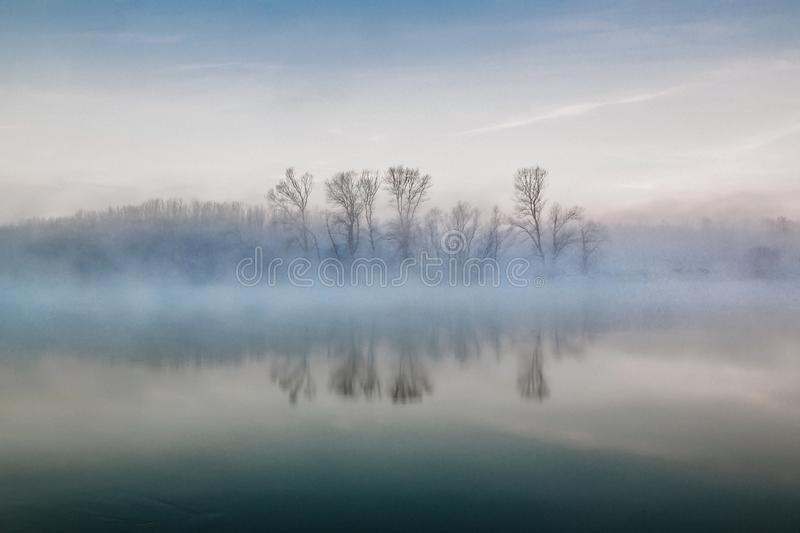 Foggy Winter Morning. A foggy winter morning at the Danube River in Romania. The thin fog rose just above the tree tops, offering us a wonderful landscape royalty free stock photo