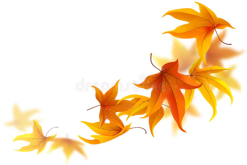 Fogli di autunno di caduta illustrazione di stock