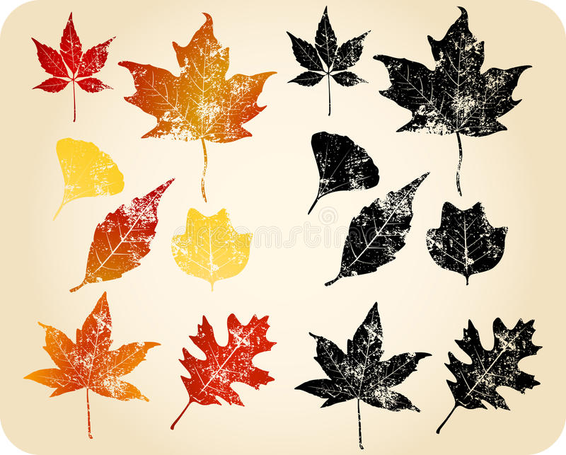 Fogli di autunno di Grunge illustrazione di stock