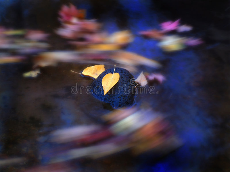 Fogli di autunno in flusso fotografie stock libere da diritti