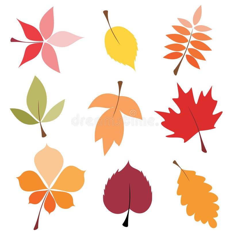 Fogli di autunno impostati illustrazione di stock