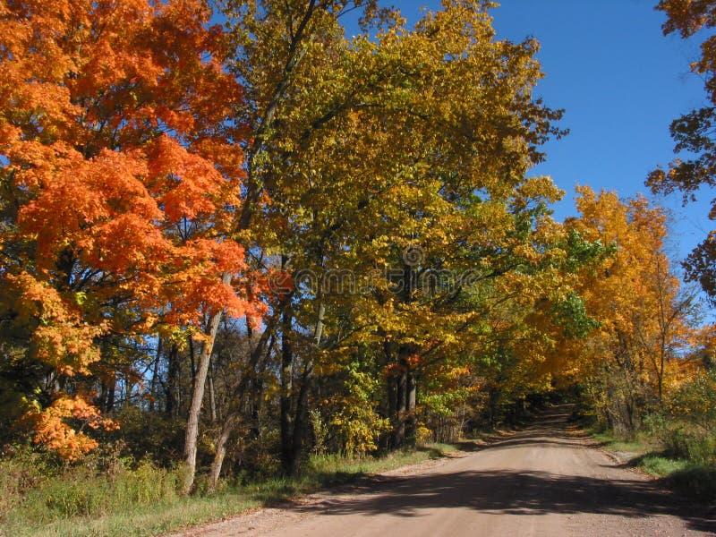 Fogli di autunno nel â 04_10_2_034 di paesaggio immagine stock libera da diritti