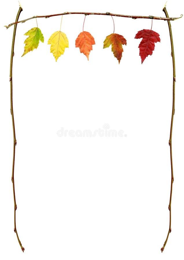 Fogli di autunno su una filiale fotografia stock