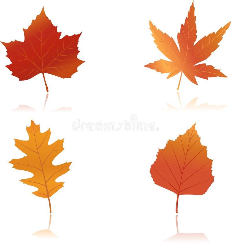 Fogli di autunno vibrante colorati illustrazione vettoriale