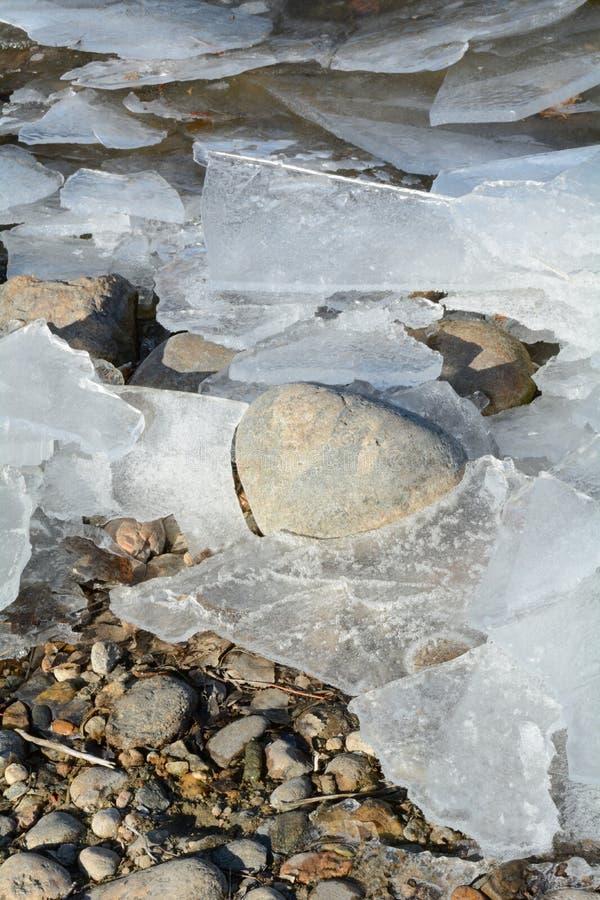 Fogli di ghiaccio sulla riva del lago fotografia stock libera da diritti