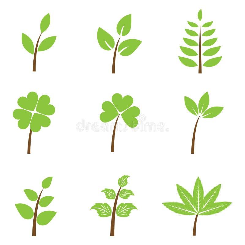 Fogli di verde - insieme royalty illustrazione gratis