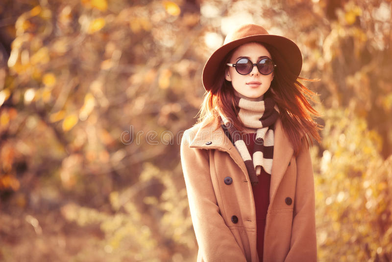 fogli dorati della ragazza del brunette fotografia stock libera da diritti