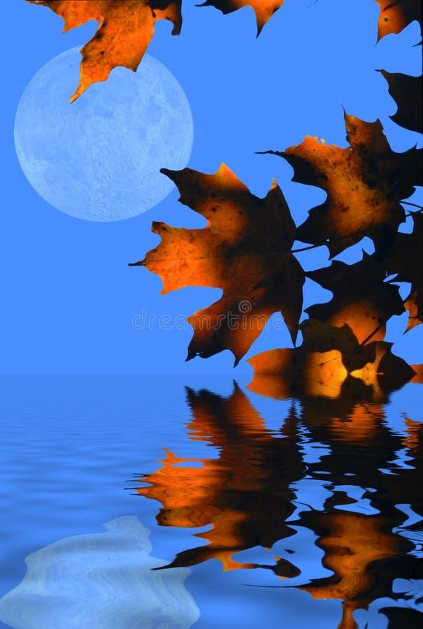 Fogli e luna di autunno illustrazione vettoriale