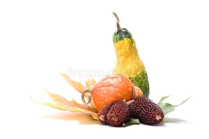 Fogli e verdure della frutta fotografia stock