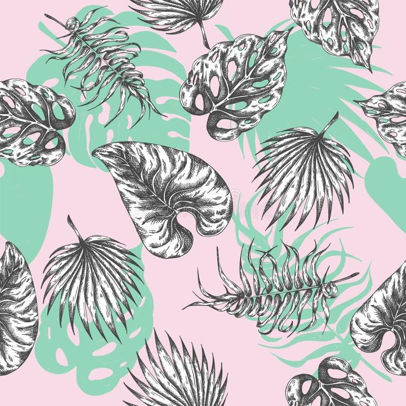 Fogli tropicali fondo botanico del modello senza cuciture con le piante tropicali Estate di foglia di palma esotica della stampa  illustrazione di stock