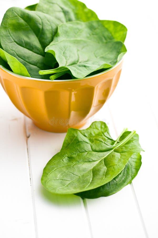 Fogli verdi degli spinaci immagini stock