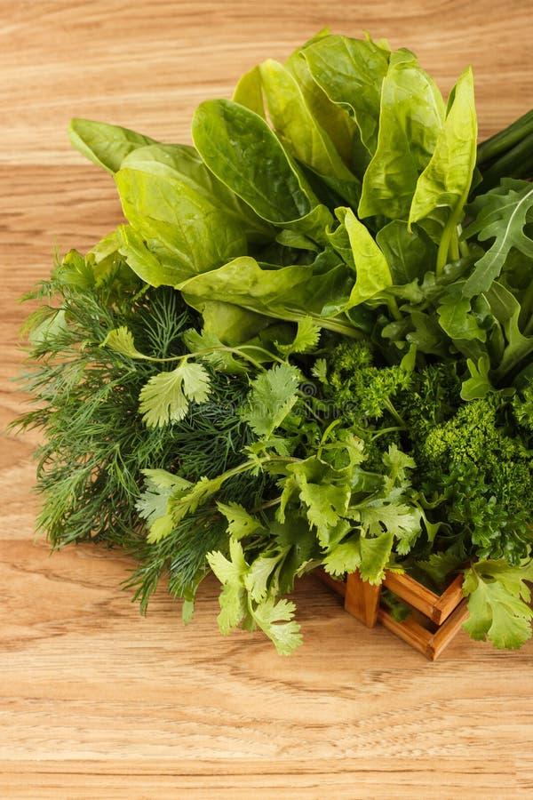 Fogli verdi freschi della lattuga fotografia stock
