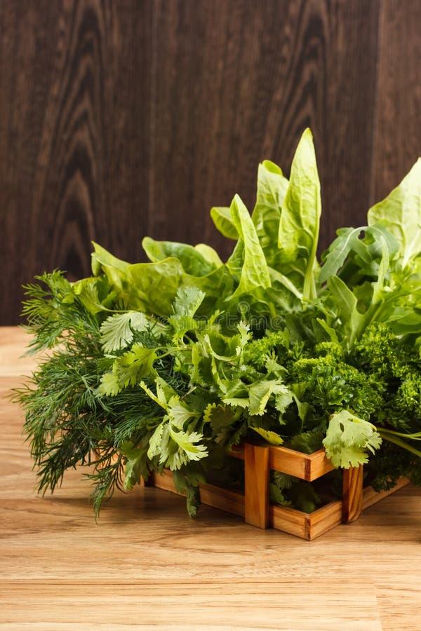 Fogli verdi freschi della lattuga immagini stock