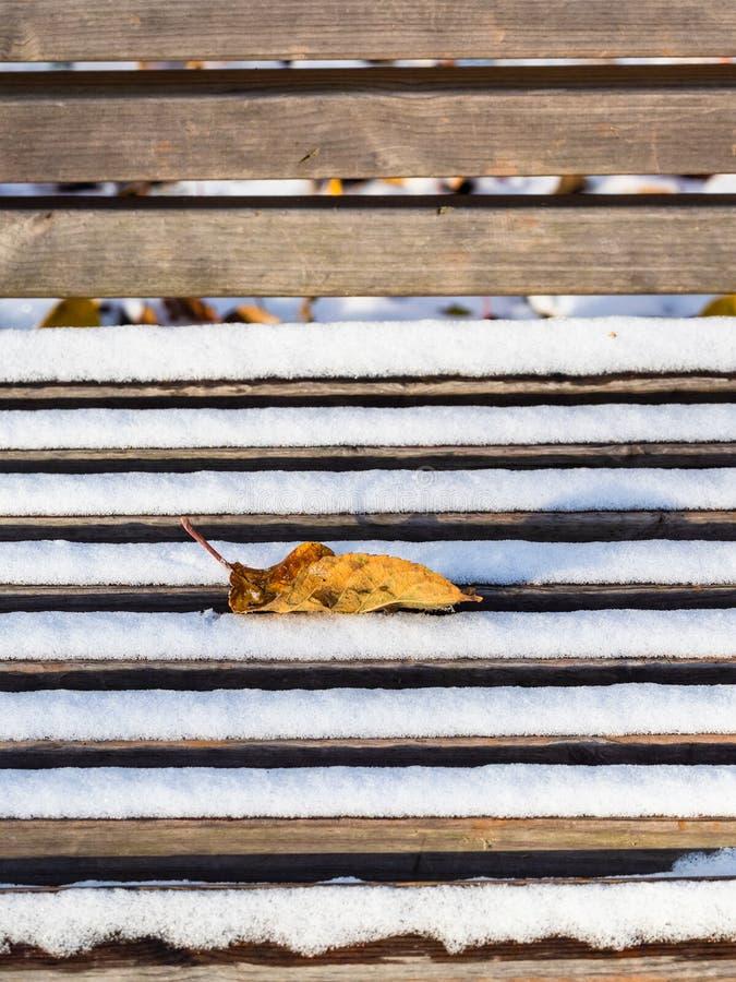 Foglia caduta sulla fine del banco su coperta di neve immagine stock