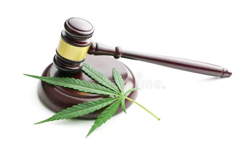 Foglia della cannabis e martelletto del giudice fotografie stock libere da diritti