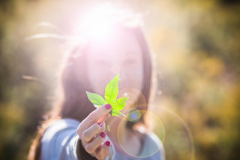 Foglia della marijuana della tenuta della ragazza fotografia stock libera da diritti