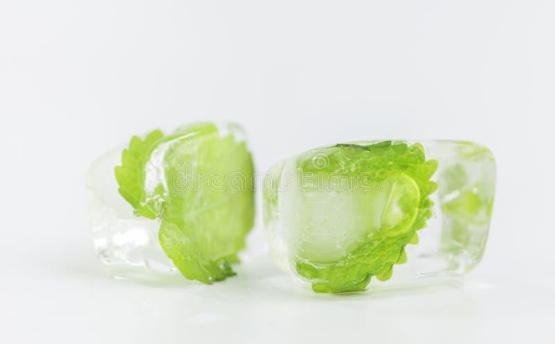 Foglia della menta congelata in cubetto di ghiaccio fotografia stock libera da diritti