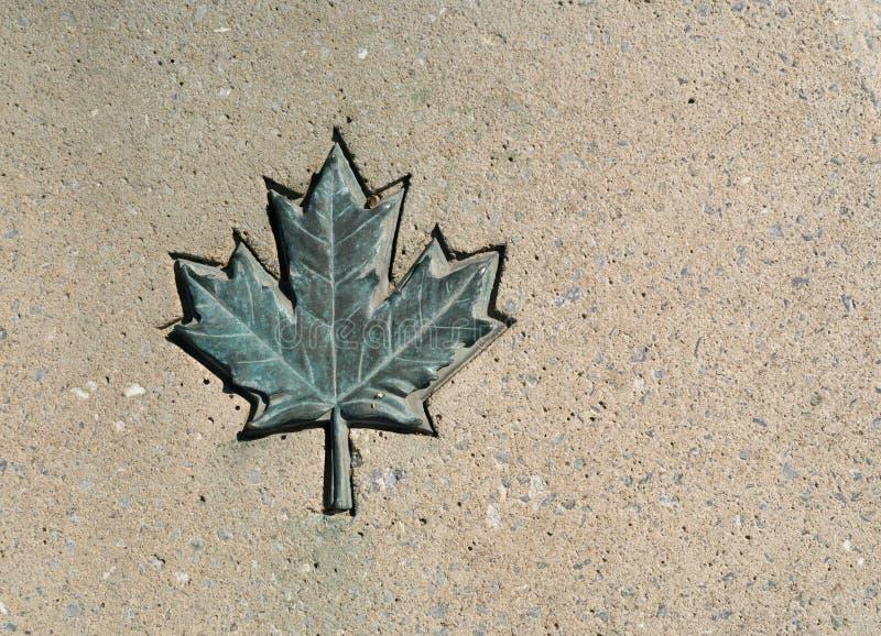 Download Foglia di acero del Canada immagine stock. Immagine di grigio - 30827121