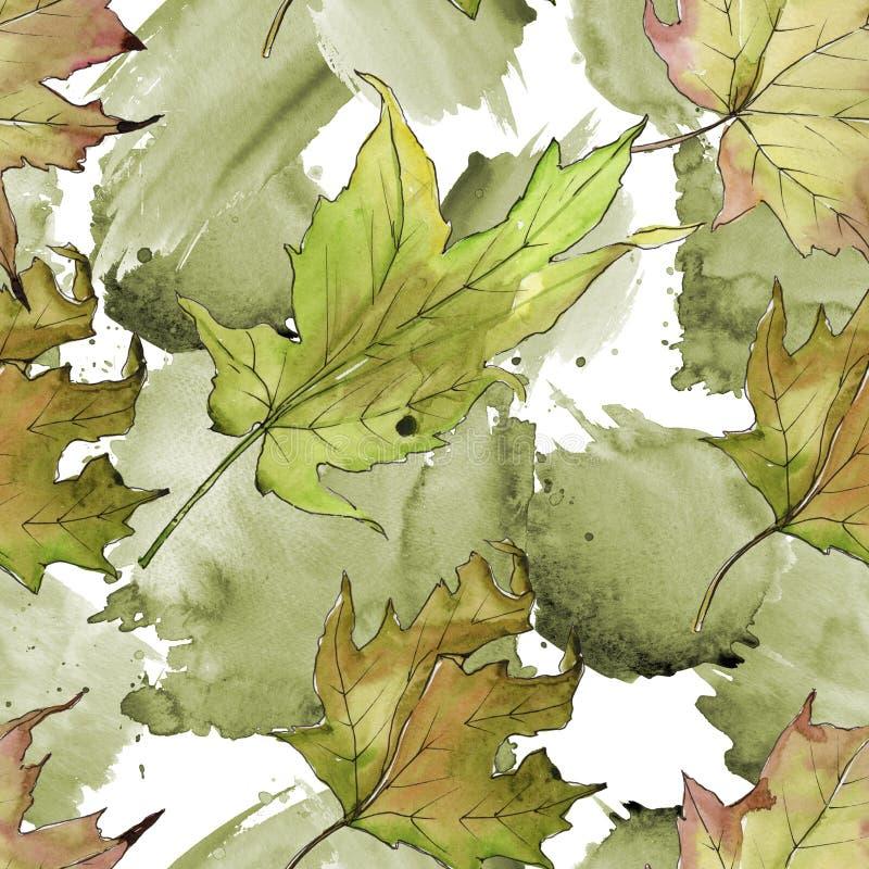 Foglia di acero isolata Fogliame floreale del giardino botanico della pianta della foglia Modello senza cuciture del fondo illustrazione di stock