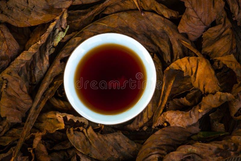 Foglia di vetro di autunno di Puer del tè cinese nero di legno fotografia stock