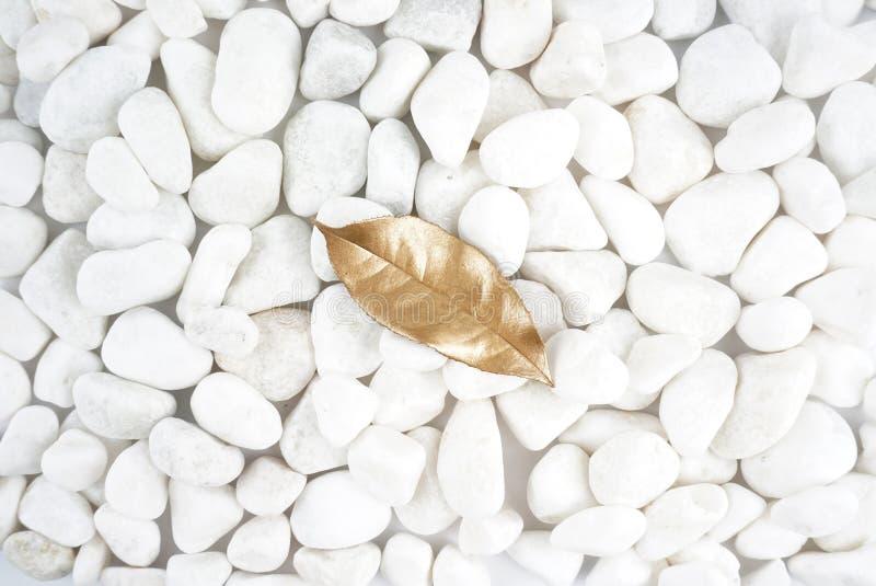 Foglia dorata isolata sulla pietra bianca cobblestone Foglia di oro Struttura della priorità bassa fotografia stock