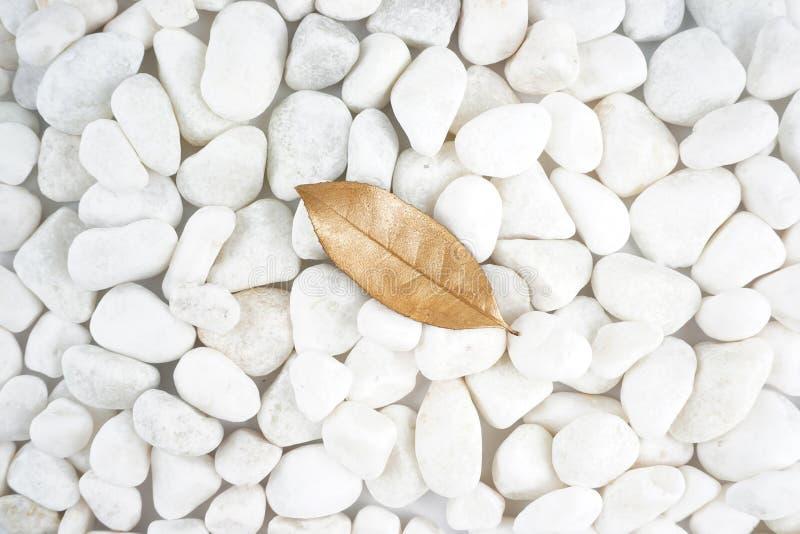Foglia dorata isolata sulla pietra bianca cobblestone Foglia di oro Struttura della priorità bassa fotografia stock libera da diritti