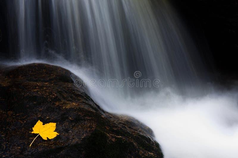 Corrente in autunno fotografia stock libera da diritti
