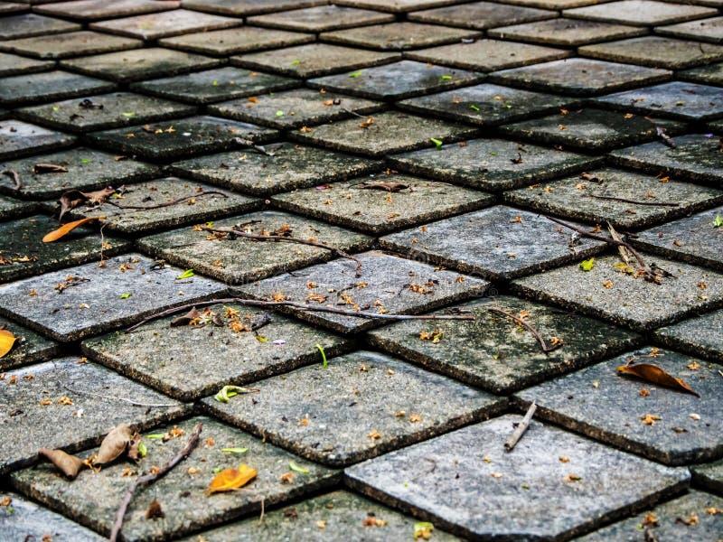 Foglia gialla sulle mattonelle di tetto quadrate di forma fotografia stock libera da diritti