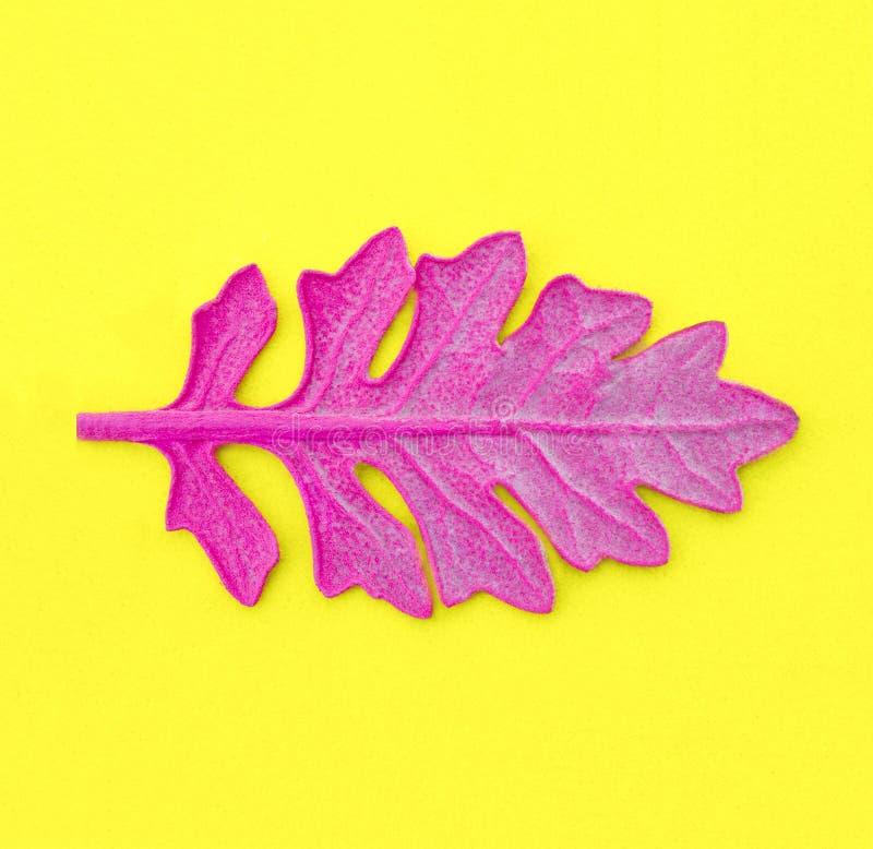 Download Foglia Rosa Su Fondo Di Carta Giallo Stile Minimo Di Pop Art Di Modo Fotografia Stock - Immagine di creativo, decorazione: 117978226