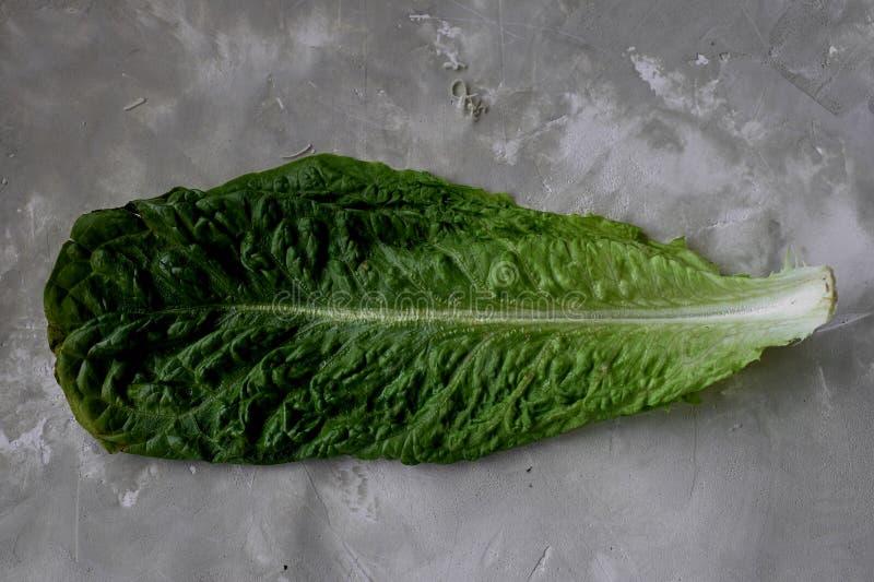 Foglia strutturata fresca e bella della lattuga su fondo concreto grigio Dieta sana immagini stock libere da diritti