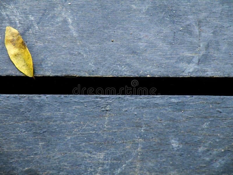 Foglia sulle plance di legno fotografie stock