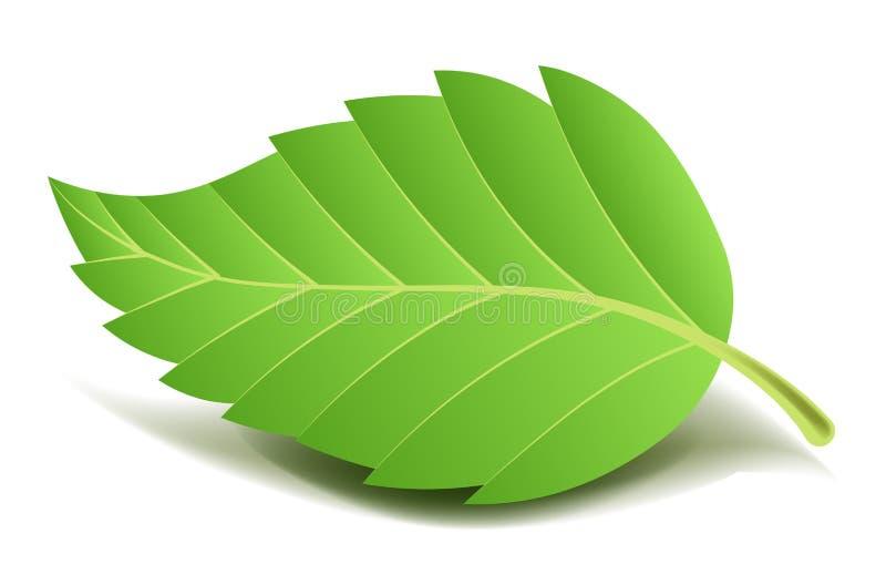 Foglia verde dell'albero sul piccolo gambo con il bordo costolato royalty illustrazione gratis