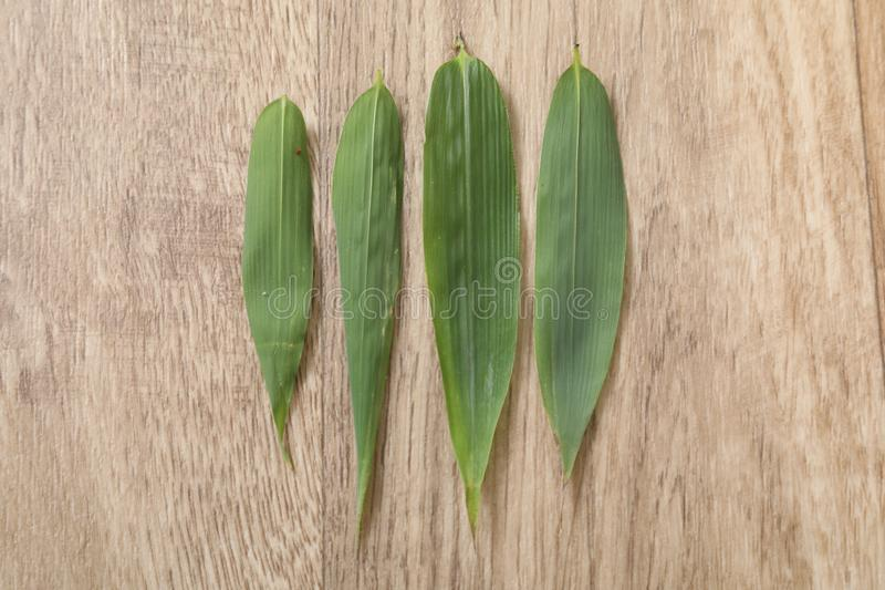 Foglia verde di bambou quattro sulla tavola di legno fotografie stock libere da diritti