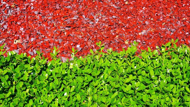 Foglia verde - pietra rossa fotografia stock libera da diritti