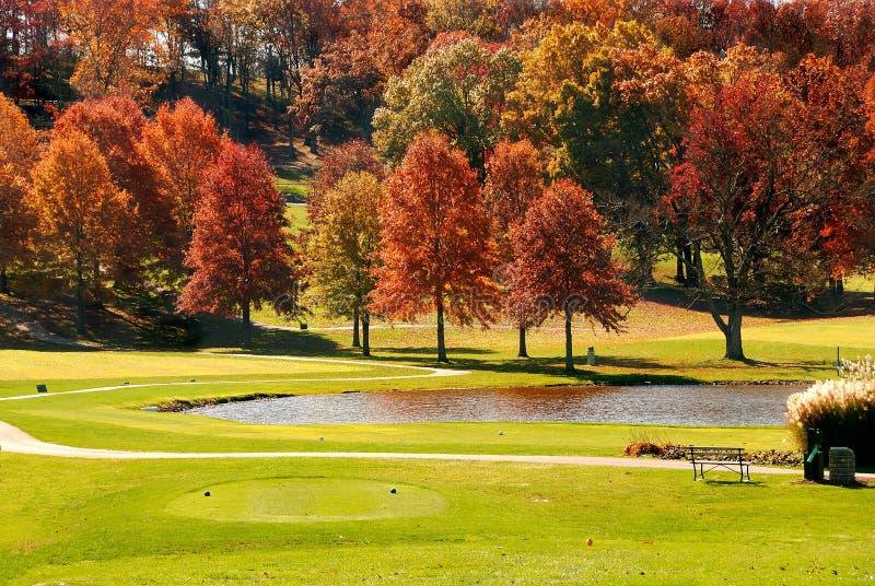 Fogliame di autunno al terreno da golf immagine stock