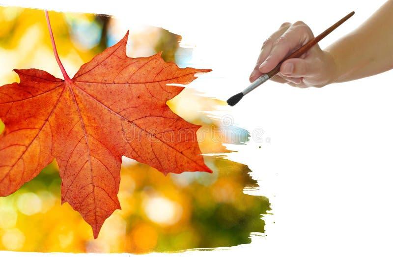 Fogliame di autunno della pittura della mano fotografia stock libera da diritti