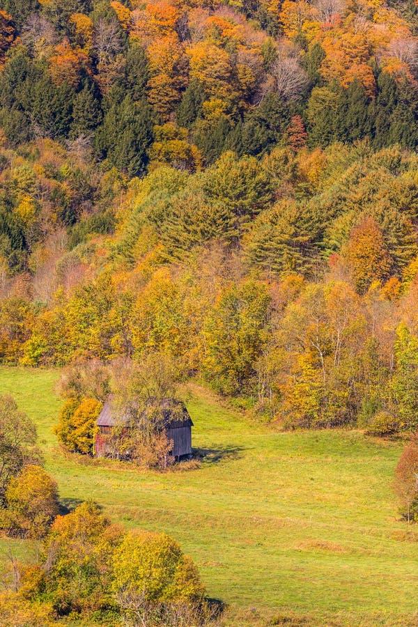 Fogliame di autunno nella campagna del Vermont fotografia stock libera da diritti