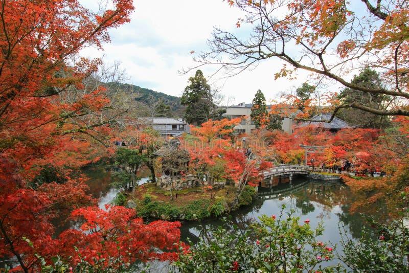 Fogliame di caduta al tempio di Eikando, Sakyo-ku, Kyoto, Giappone immagine stock libera da diritti