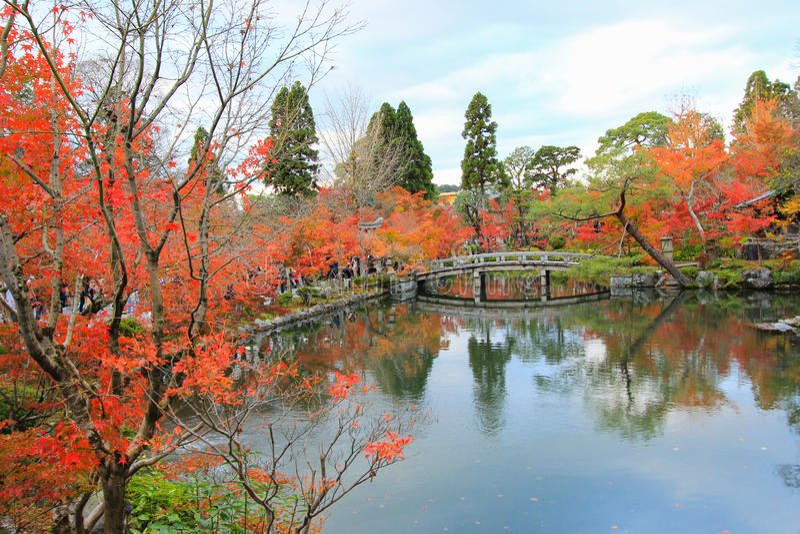 Fogliame di caduta al tempio di Eikando (Zenrin-ji), Sakyo-ku, Kyoto, Giappone immagini stock libere da diritti